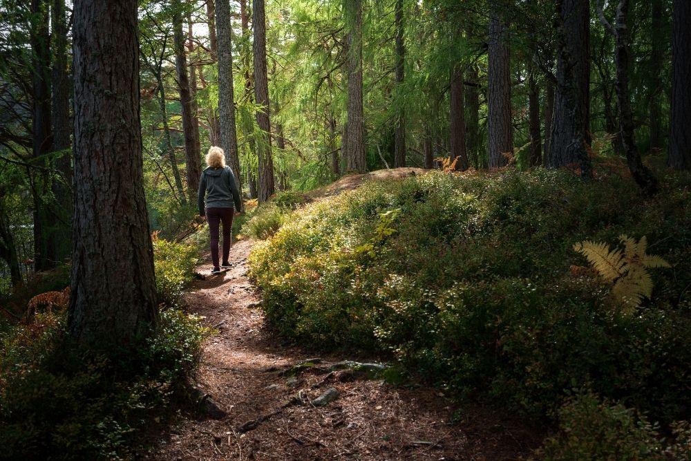 Nainen kävelee metsässä.