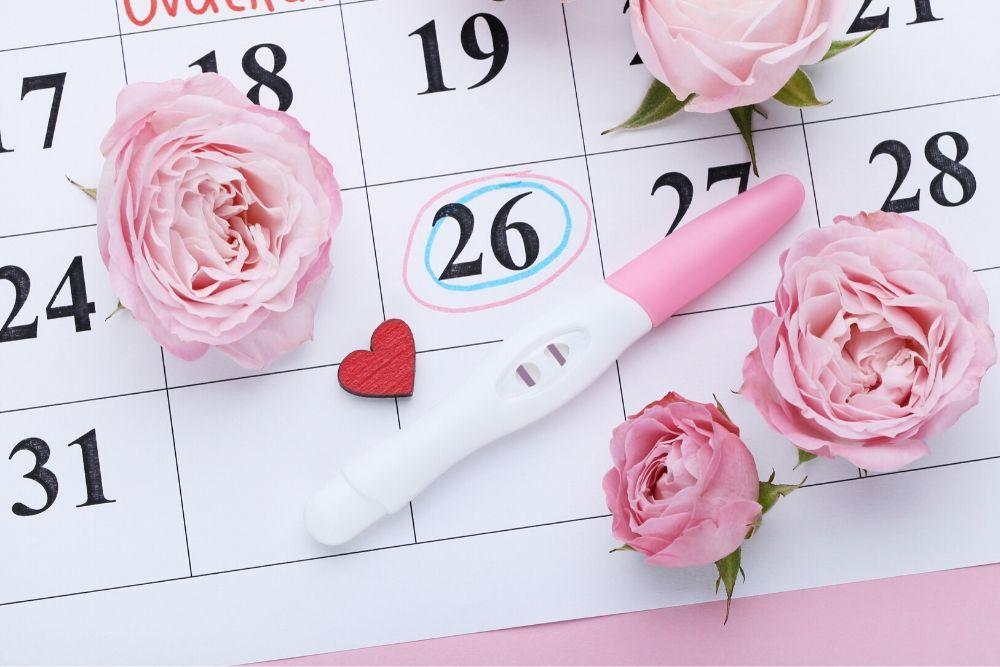 Raskaustesti, kalenteri ja ruusut
